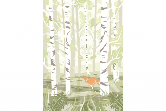 Birch Poster